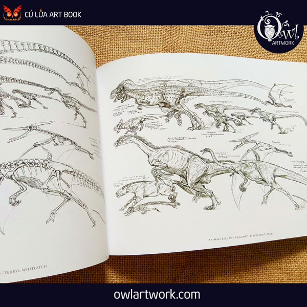 owlartwork-sach-artbook-concept-art-animal-real-and-imagined-13
