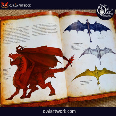 owlartwork-sach-artbook-concept-art-dracopedia-guide-to-drawing-dragons-of-the-world-11