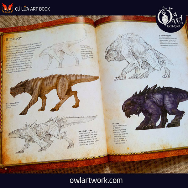 owlartwork-sach-artbook-concept-art-dracopedia-guide-to-drawing-dragons-of-the-world-13