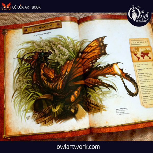 owlartwork-sach-artbook-concept-art-dracopedia-guide-to-drawing-dragons-of-the-world-14