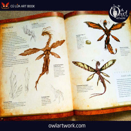 owlartwork-sach-artbook-concept-art-dracopedia-guide-to-drawing-dragons-of-the-world-15