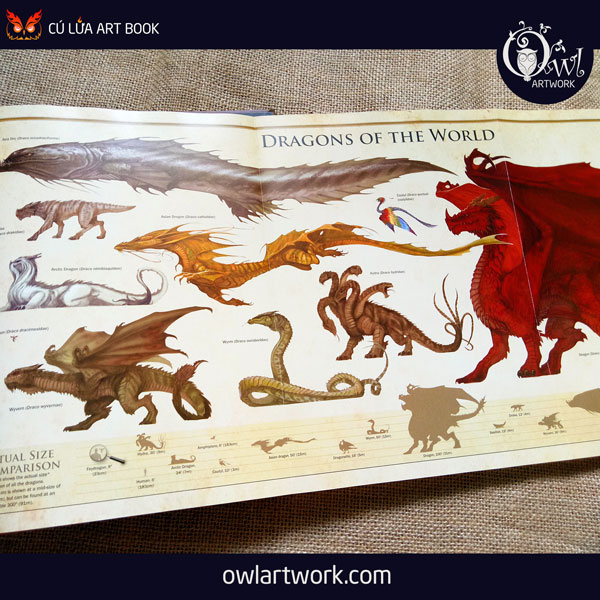 owlartwork-sach-artbook-concept-art-dracopedia-guide-to-drawing-dragons-of-the-world-19