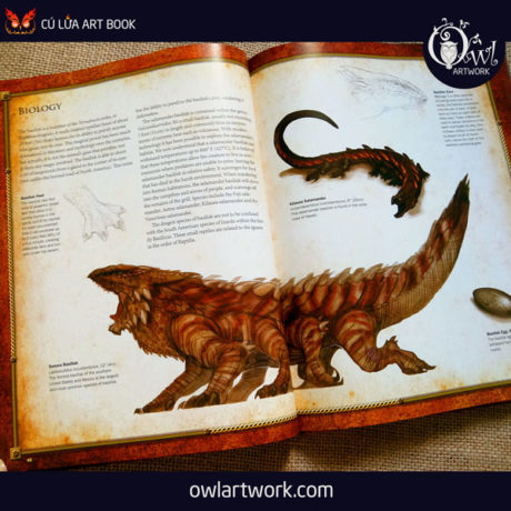 owlartwork-sach-artbook-concept-art-dracopedia-guide-to-drawing-dragons-of-the-world-8