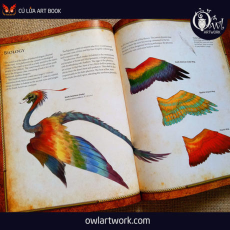 owlartwork-sach-artbook-concept-art-dracopedia-guide-to-drawing-dragons-of-the-world-9