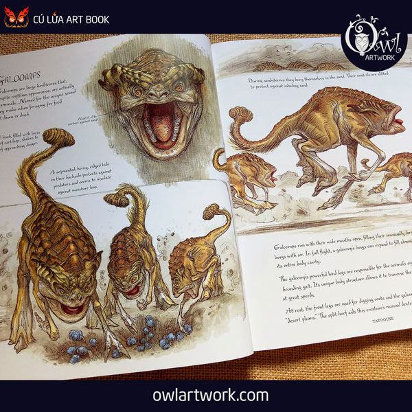 owlartwork-sach-artbook-concept-art-the-wild-life-of-star-wars-5