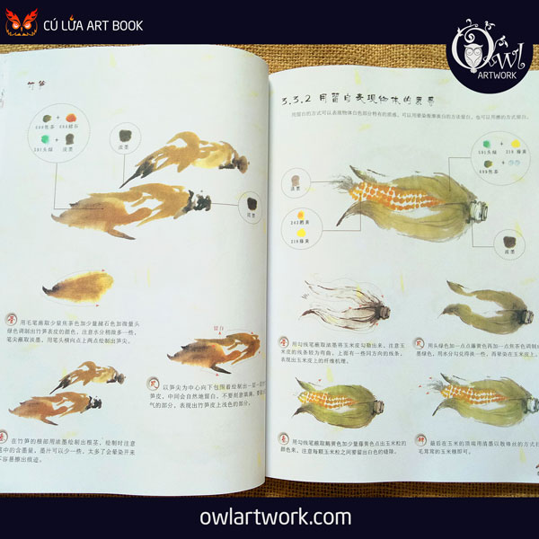 owlartwork-sach-artbook-day-ve-ky-thuat-ve-mau-nuoc-thien-nhien-7