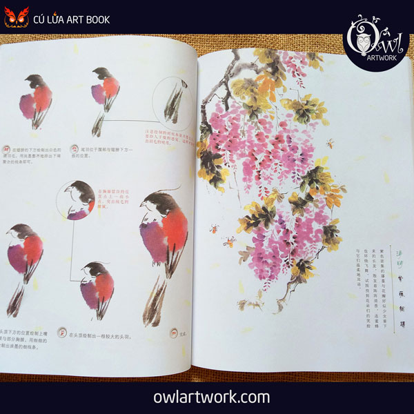owlartwork-sach-artbook-day-ve-ky-thuat-ve-mau-nuoc-thien-nhien-9
