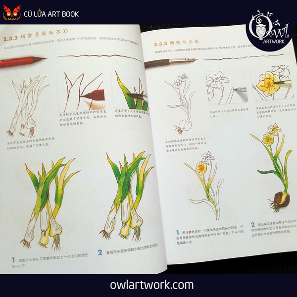 owlartwork-sach-artbook-day-ve-mau-nuoc-co-ban-6
