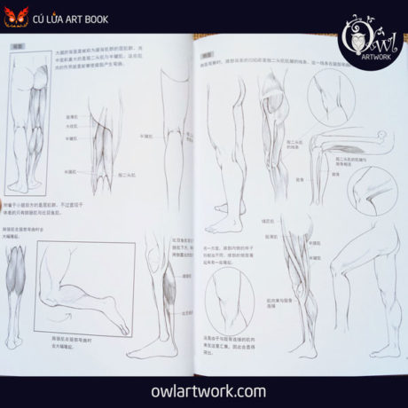 owlartwork-sach-artbook-day-ve-nam-thanh-nien-8