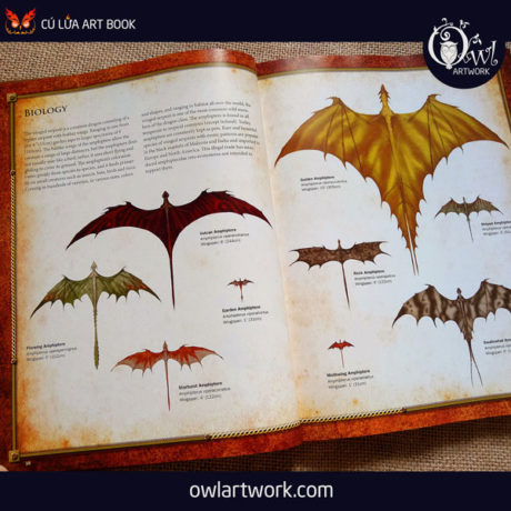 owlartwork-sach-artbook-concept-art-dracopedia-guide-to-drawing-dragons-of-the-world-5