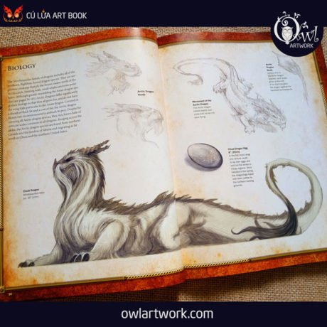 owlartwork-sach-artbook-concept-art-dracopedia-guide-to-drawing-dragons-of-the-world-6