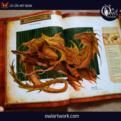 owlartwork-sach-artbook-concept-art-dracopedia-guide-to-drawing-dragons-of-the-world-7