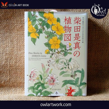 owlartwork-sach-artbook-concept-art-flora-sketches-vang-1