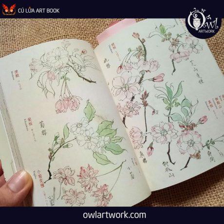 owlartwork-sach-artbook-concept-art-flora-sketches-vang-15