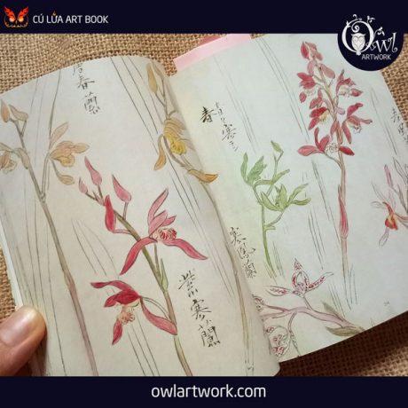 owlartwork-sach-artbook-concept-art-flora-sketches-vang-16