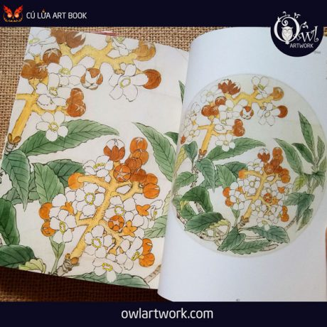 owlartwork-sach-artbook-concept-art-flora-sketches-vang-4