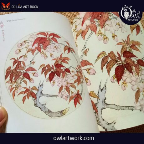 owlartwork-sach-artbook-concept-art-flora-sketches-vang-7