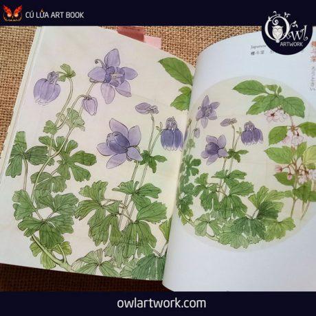 owlartwork-sach-artbook-concept-art-flora-sketches-vang-9