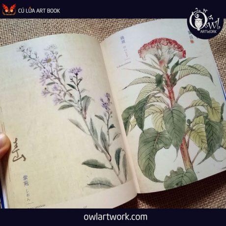 owlartwork-sach-artbook-concept-art-flora-sketches-xanh-13