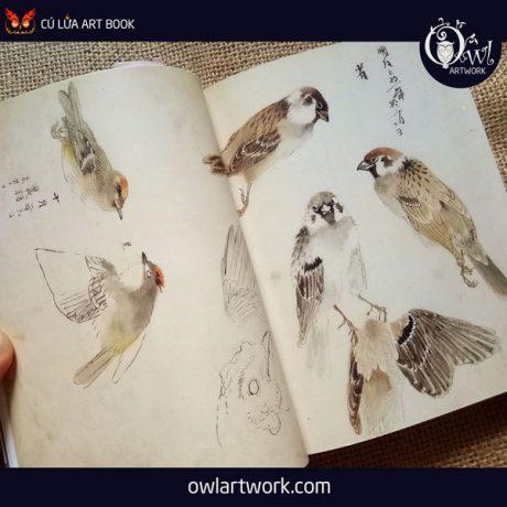 owlartwork-sach-artbook-concept-art-flora-sketches-xanh-14
