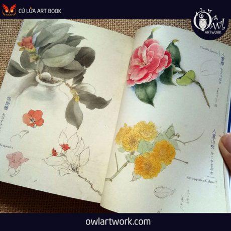 owlartwork-sach-artbook-concept-art-flora-sketches-xanh-4