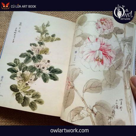 owlartwork-sach-artbook-concept-art-flora-sketches-xanh-5