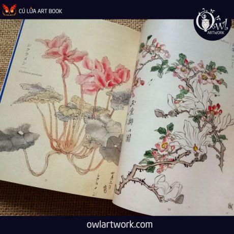 owlartwork-sach-artbook-concept-art-flora-sketches-xanh-7