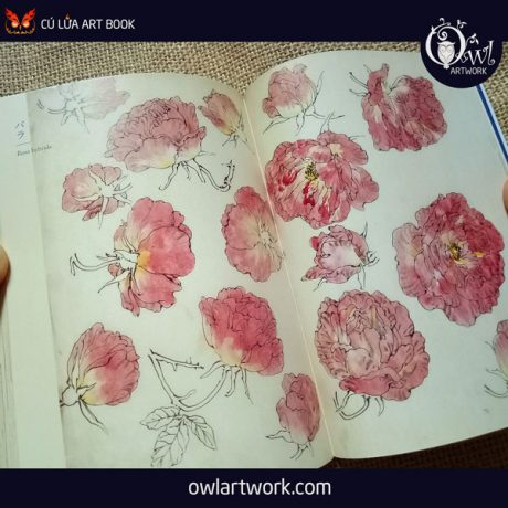 owlartwork-sach-artbook-concept-art-flora-sketches-xanh-9