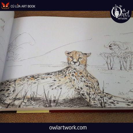 owlartwork-sach-artbook-sketch-travel-8